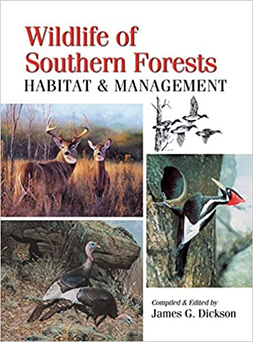 Wildlife of Southern Forests