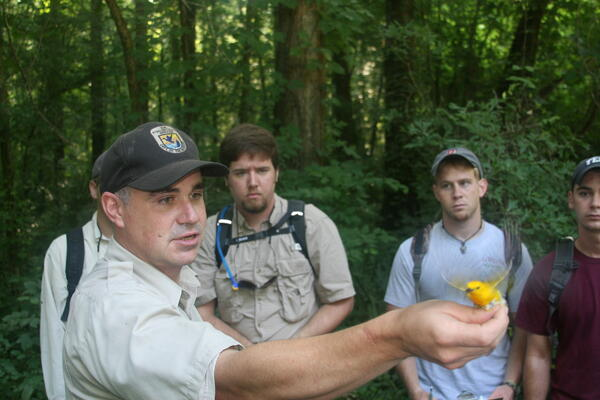 USFWS Biologist releasing Prothnotary warbler with students looking on