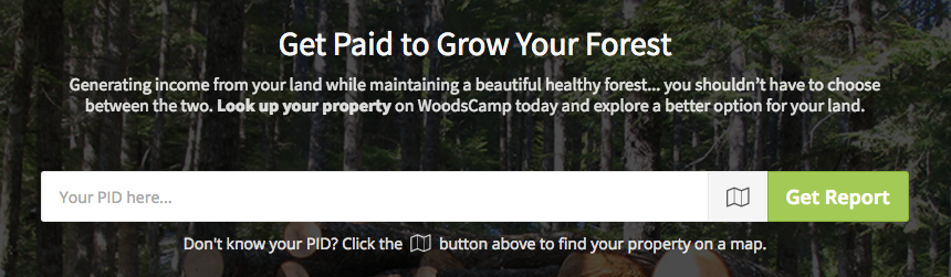 Get Paid to Grow your Forest