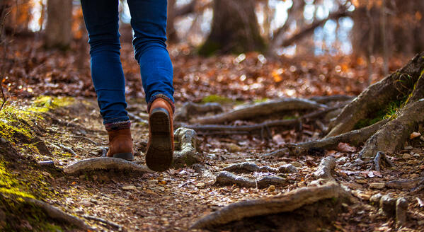 Image of the legs of a female walking away from the camera over tree roots, moss and leaves in a wooded area.